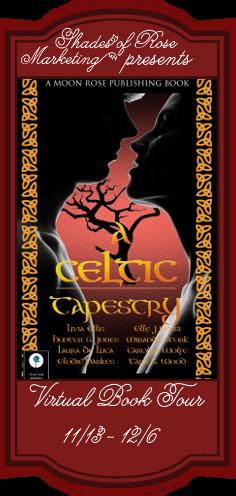 A Celtic Tapestry VBT Banner