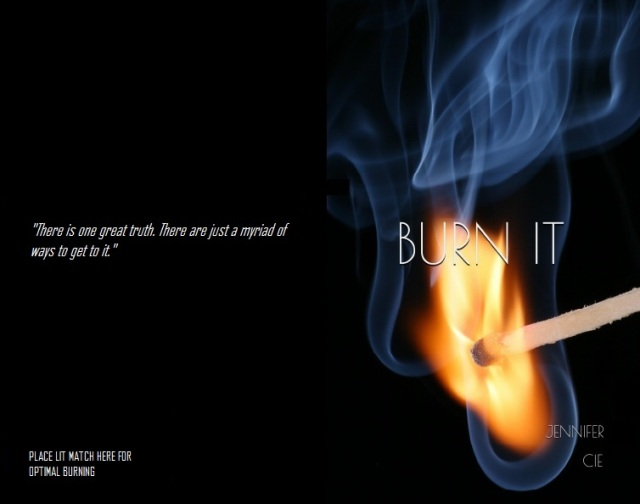 Burn It Front-Back Cover (2)