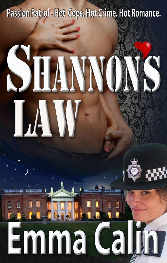 Photo B  - Shannon's Law tour Cover art